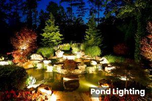 Pond Lighting5